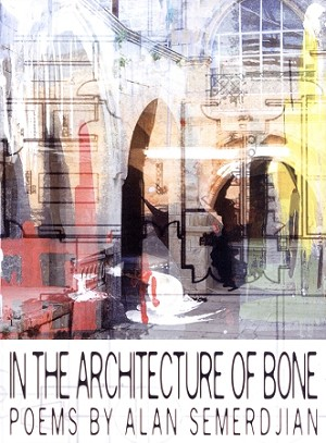 In the Architecture of Bone: Poems